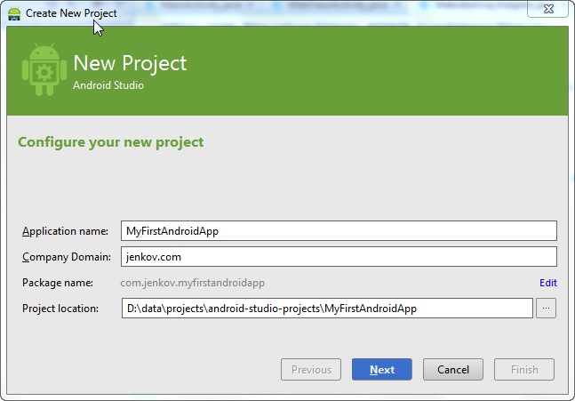 New project dialog - enter application name, company domain and project location.