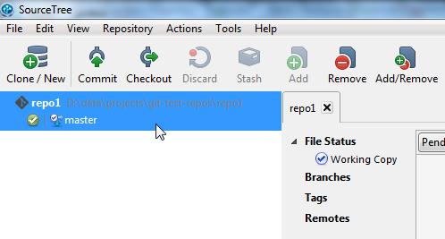 SourceTree after the new repository is created.